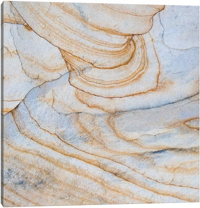 Sandstone Swirl Pattern III, Grand Staircase-Escalante National Monument, Utah, USA Canvas Art Print