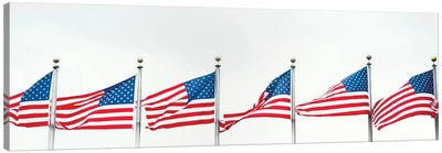 American Flags Canvas Art Print