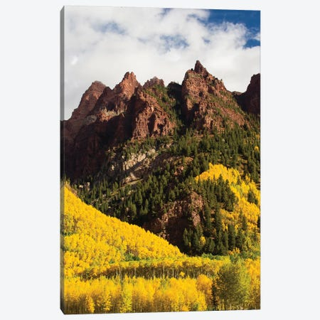 Autumn Trees On Mountain, Maroon Bells, Maroon Creek Valley, Aspen, Pitkin County, Colorado, USA I Canvas Print #PIM14269} by Panoramic Images Art Print