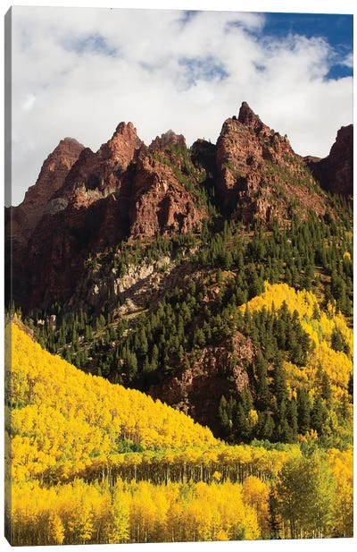 Autumn Trees On Mountain, Maroon Bells, Maroon Creek Valley, Aspen, Pitkin County, Colorado, USA I Canvas Art Print