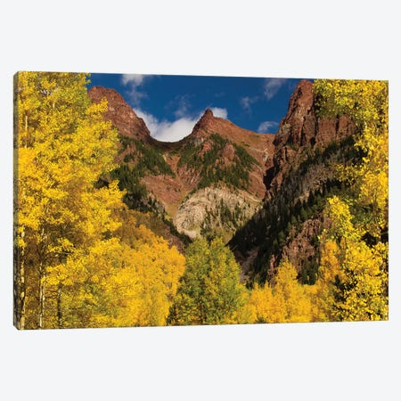 Autumn Trees On Mountain, Maroon Bells, Maroon Creek Valley, Aspen, Pitkin County, Colorado, USA II Canvas Print #PIM14270} by Panoramic Images Canvas Wall Art