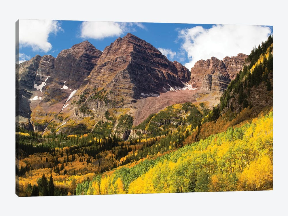 Autumn Trees On Mountain, Maroon Bells, Maroon Creek Valley, Aspen, Pitkin County, Colorado, USA III by Panoramic Images 1-piece Art Print