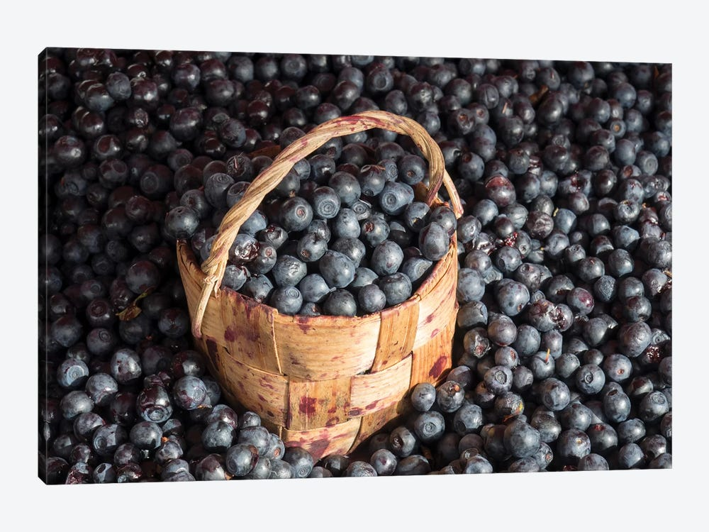 Blueberries At Market For Sale, Helsinki, Finland by Panoramic Images 1-piece Canvas Art