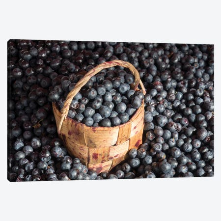 Blueberries At Market For Sale, Helsinki, Finland Canvas Print #PIM14290} by Panoramic Images Canvas Artwork