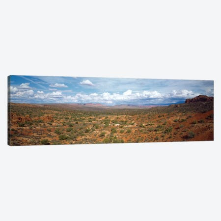 Bushes In A Desert, Arches National Park, Utah, USA Canvas Print #PIM14324} by Panoramic Images Canvas Art Print