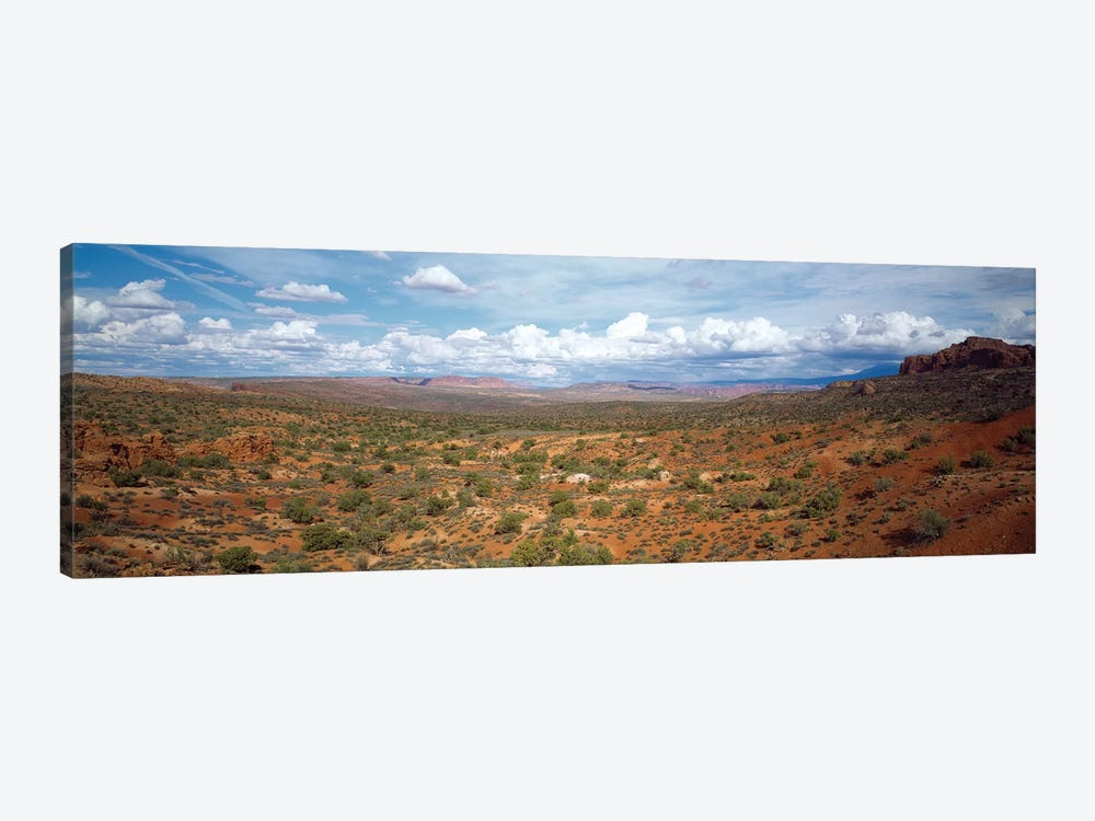 Bushes In A Desert, Arches National Park, Utah, USA by Panoramic Images 1-piece Canvas Wall Art