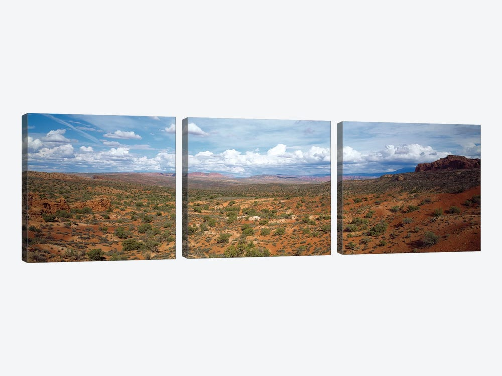 Bushes In A Desert, Arches National Park, Utah, USA by Panoramic Images 3-piece Canvas Artwork