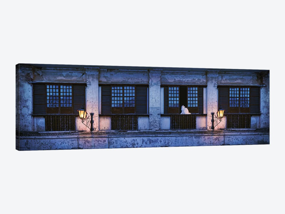 Cat Sitting On Window Sill Of Building, Vigan, Ilocos Sur, Philippines, Night by Panoramic Images 1-piece Canvas Art