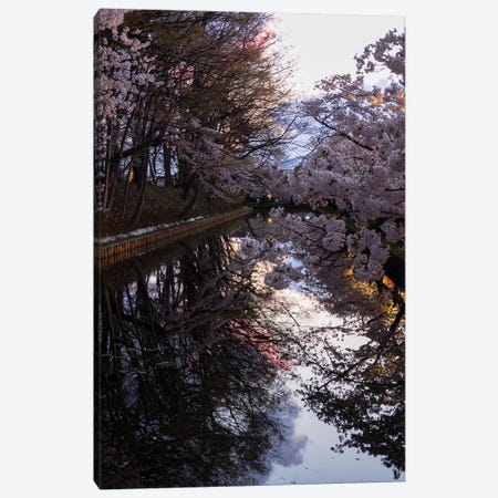 Cherry Blossoms Reflected In Outer Moat, Hirosaki Park, Hirosaki, Aomori Prefecture, Japan Canvas Print #PIM14341} by Panoramic Images Canvas Artwork