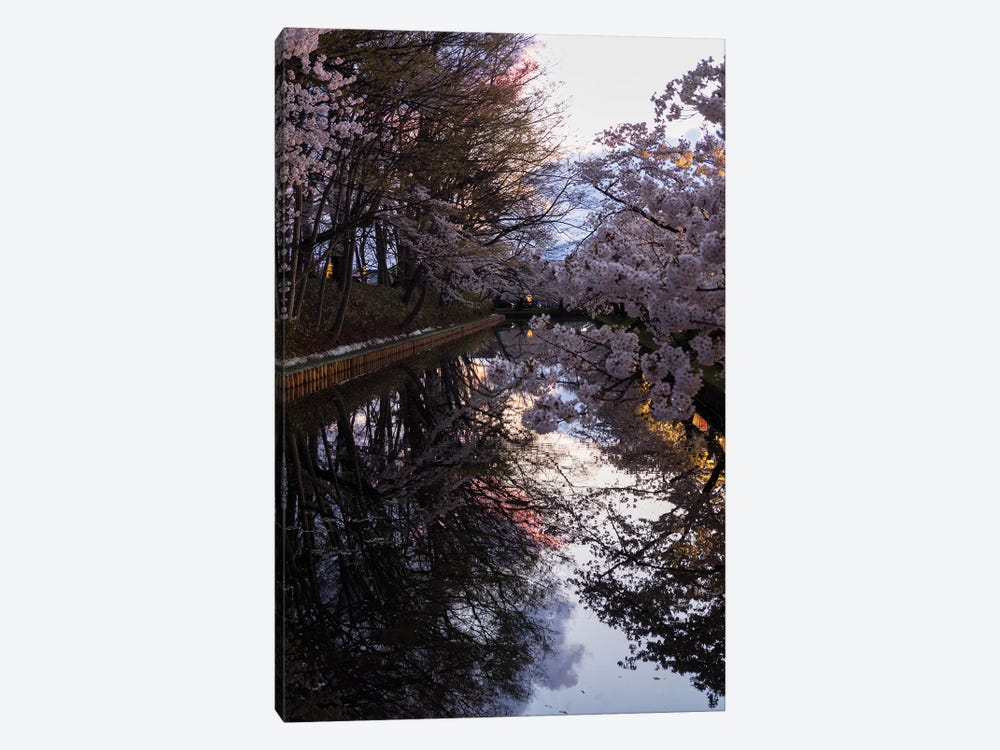Cherry Blossoms Reflected In Outer Moat, Hirosaki Park, Hirosaki, Aomori Prefecture, Japan by Panoramic Images 1-piece Art Print