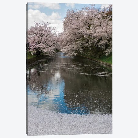 Cherry Trees And Blossoms Reflected In Outer Moat Of Hirosaki Park, Hirosaki, Aomori Prefecture, Japan Canvas Print #PIM14344} by Panoramic Images Canvas Print