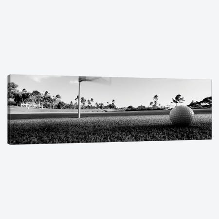 Close Up Of Golf Ball And Hole, Hawaii, USA (Black And White) Canvas Print #PIM14350} by Panoramic Images Art Print