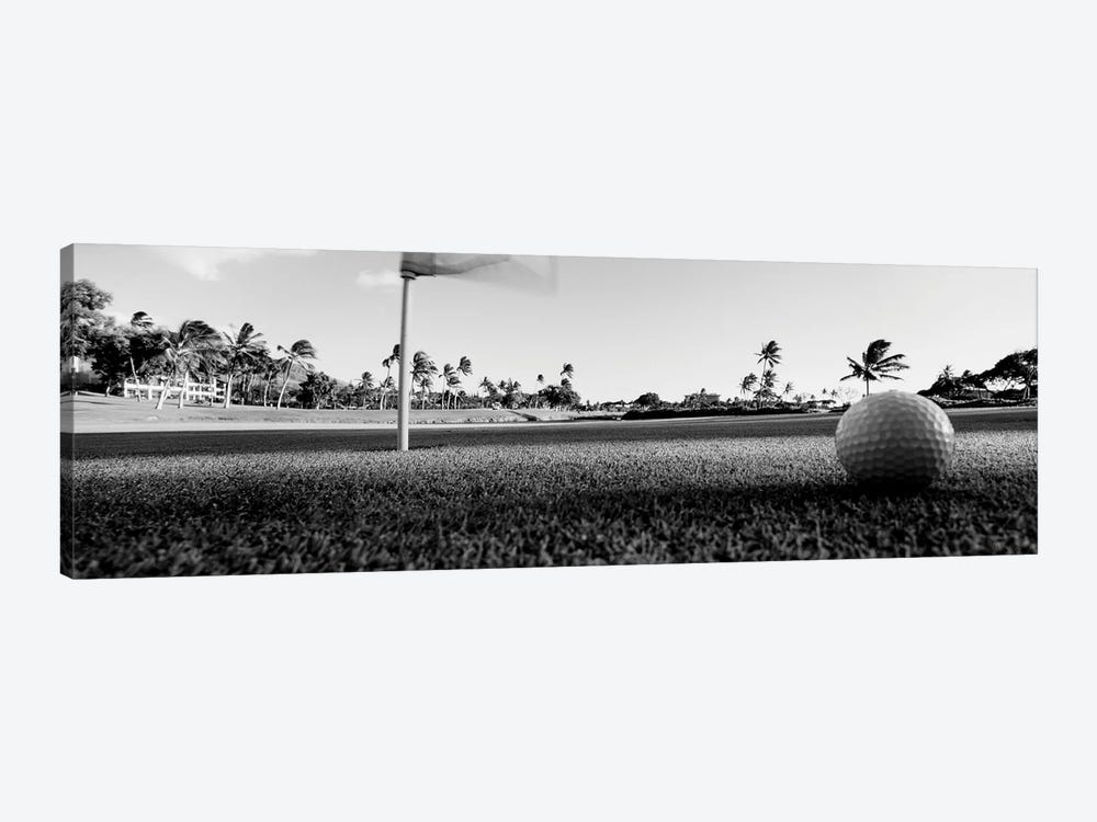 Close Up Of Golf Ball And Hole, Hawaii, USA (Black And White) by Panoramic Images 1-piece Art Print