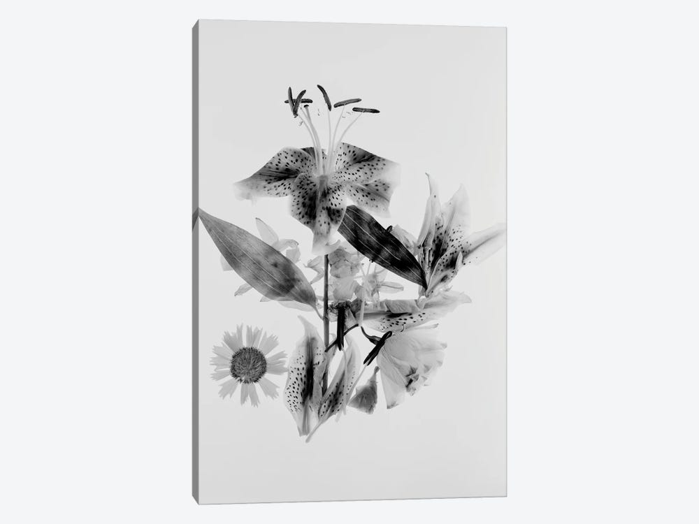 Close-Up Abstract Of Flower Arrangement by Panoramic Images 1-piece Canvas Artwork