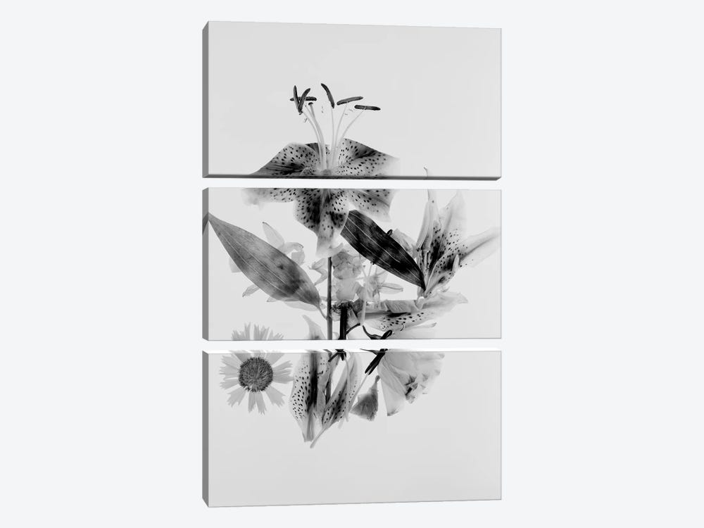 Close-Up Abstract Of Flower Arrangement by Panoramic Images 3-piece Canvas Art
