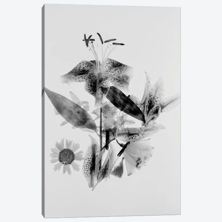 Close-Up Abstract Of Flower Arrangement 3-Piece Canvas #PIM14353} by Panoramic Images Canvas Art Print