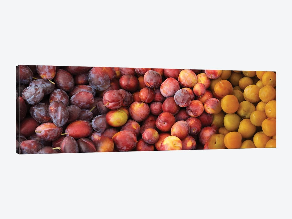 Close-Up Of Assorted Plums For Sale by Panoramic Images 1-piece Canvas Art Print