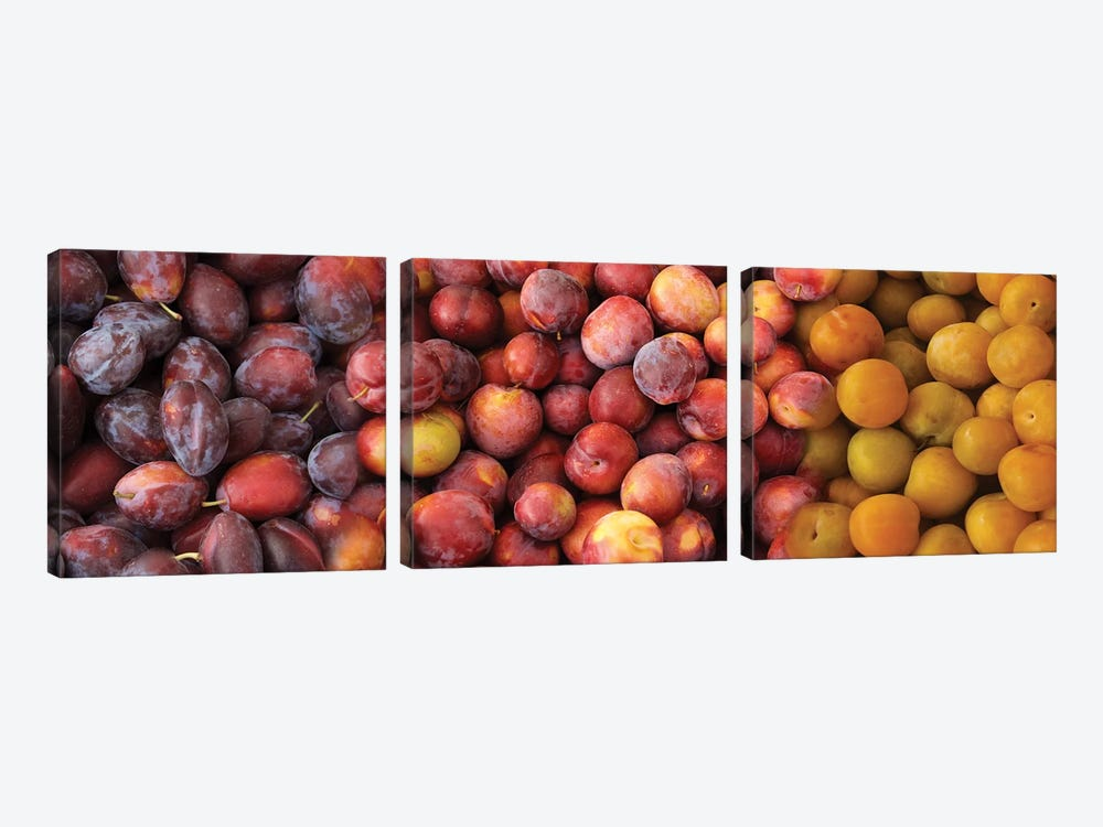 Close-Up Of Assorted Plums For Sale by Panoramic Images 3-piece Art Print