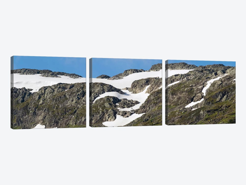 Close-Up Of Mountain, Sogn Og Fjordane County, Norway by Panoramic Images 3-piece Canvas Print