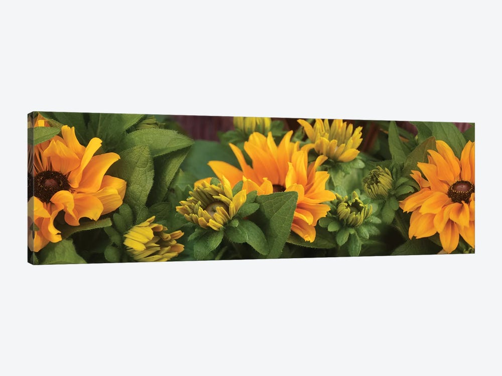 Close-Up Of Orange Flowers Blooming I by Panoramic Images 1-piece Canvas Wall Art