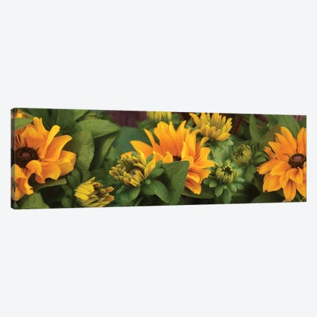Close-Up Of Orange Flowers Blooming I Canvas Print #PIM14463} by Panoramic Images Canvas Art Print