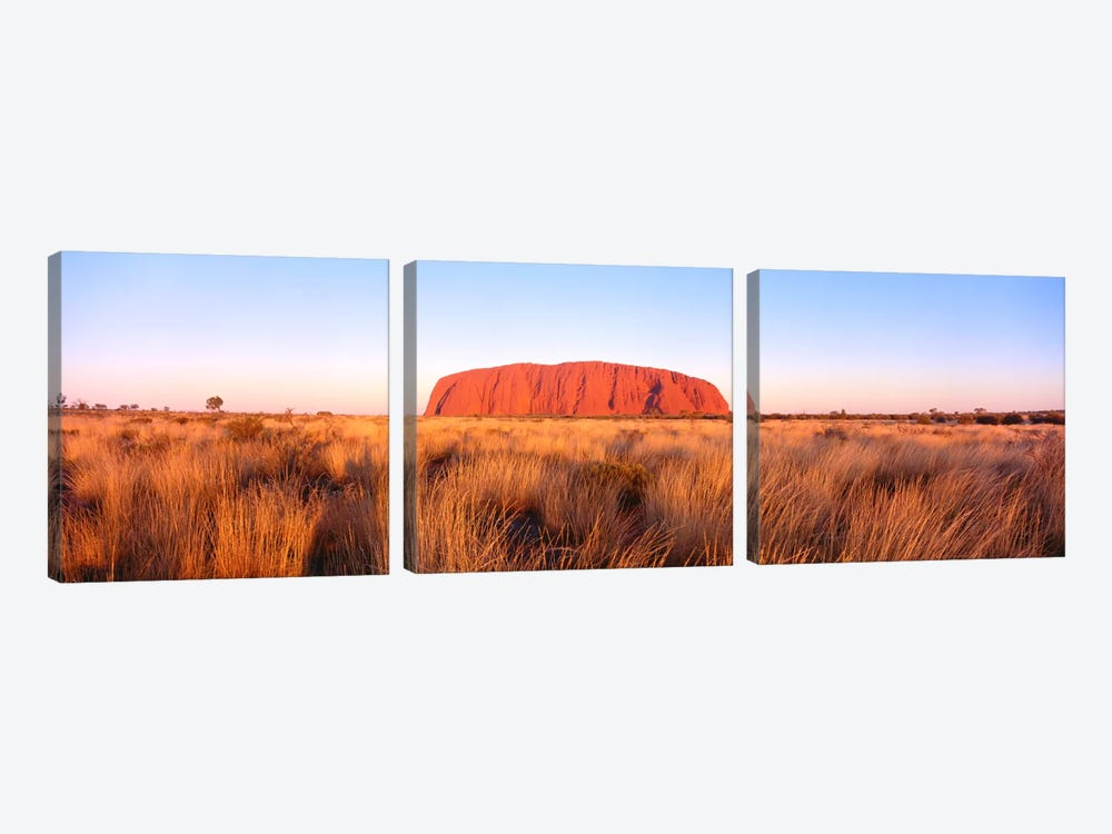 Uluru (Ayers Rock), Uluru-Kata Tjuta National Park, Northern Territory, Australia by Panoramic Images 3-piece Canvas Print