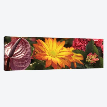 Close-Up Of Red Anthurium, Gerbera Daisy And Red Hydrangeas Flowers Canvas Print #PIM14509} by Panoramic Images Canvas Artwork