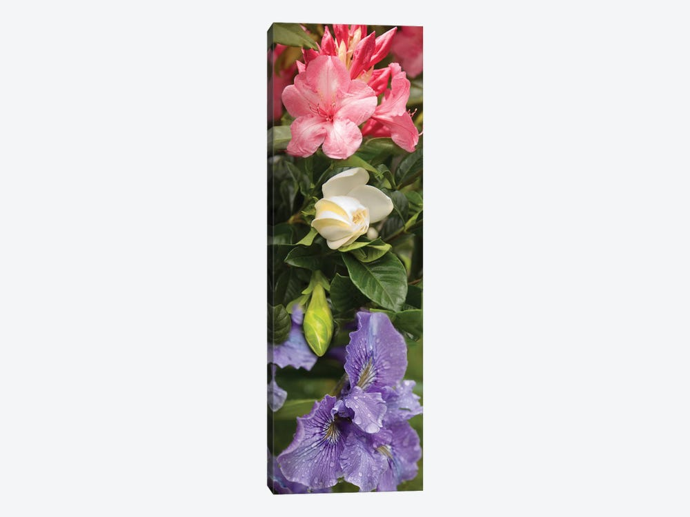 Close-Up Of Rhododendron And Iris Flowers by Panoramic Images 1-piece Canvas Artwork