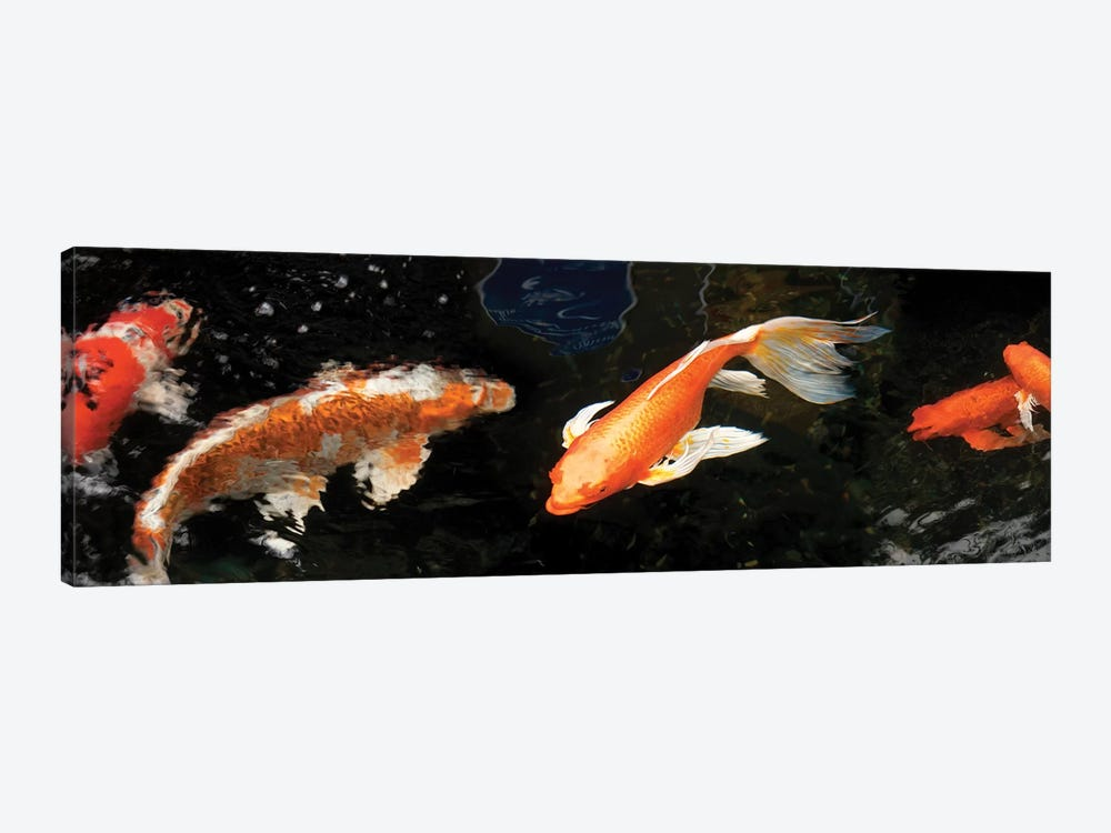Colorful Koi Fish II 1-piece Canvas Wall Art