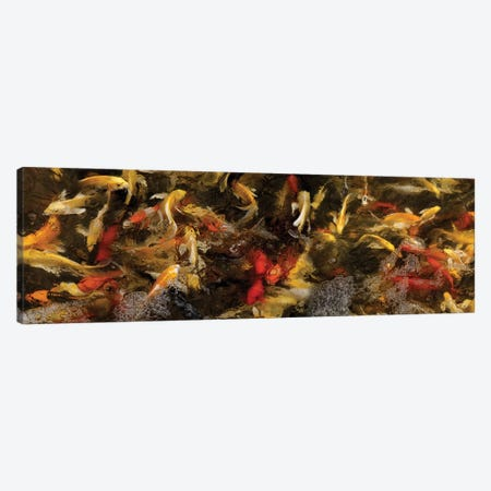 Colorful Koi Fish VI Canvas Print #PIM14595} by Panoramic Images Canvas Art