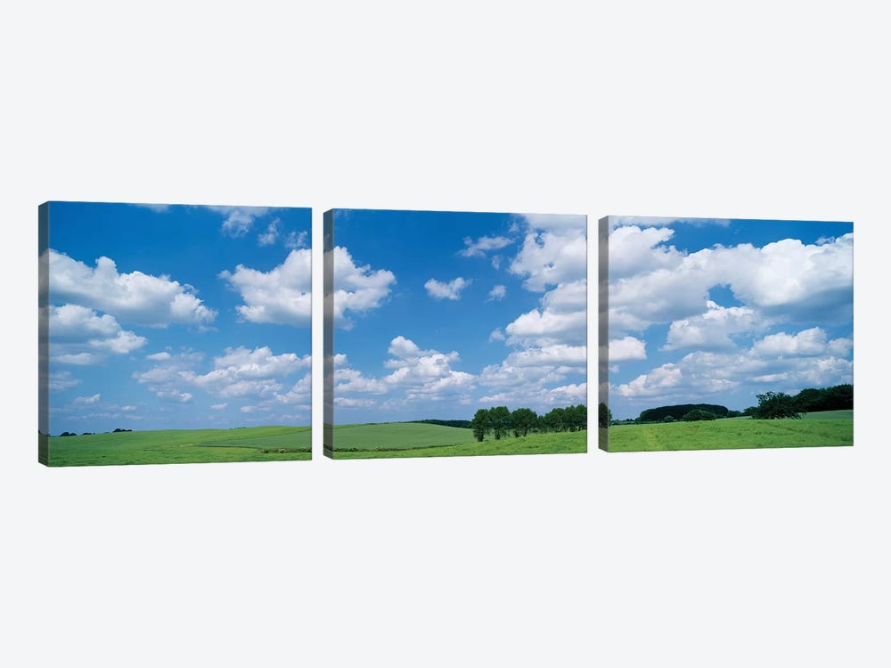 Cumulus Clouds Over A Landscape, Germany by Panoramic Images 3-piece Canvas Artwork