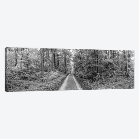 Dirt Road Passing Through A Forest, Baden-Württemberg, Germany Canvas Print #PIM14621} by Panoramic Images Canvas Art Print