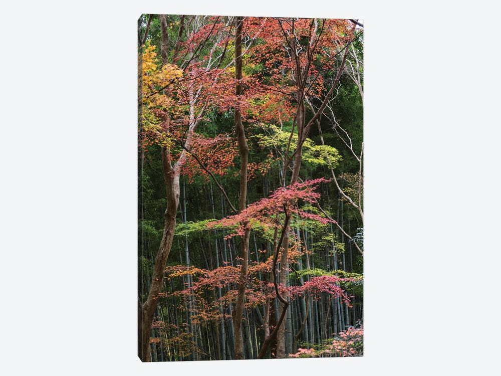 Fall Foliage At Ginkaku-Ji Temple, Kyoti Prefecture, Japan by Panoramic Images 1-piece Canvas Print