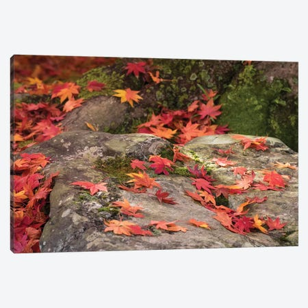 Fallen Autumnal Leaves On Rock, Kodaiji Temple, Kyoti Prefecture, Japan Canvas Print #PIM14644} by Panoramic Images Canvas Wall Art