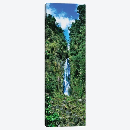 Father Falls, Trafalgar Falls, Dominica, Caribbean Canvas Print #PIM14646} by Panoramic Images Canvas Wall Art
