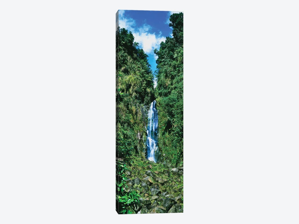 Father Falls, Trafalgar Falls, Dominica, Caribbean by Panoramic Images 1-piece Canvas Artwork