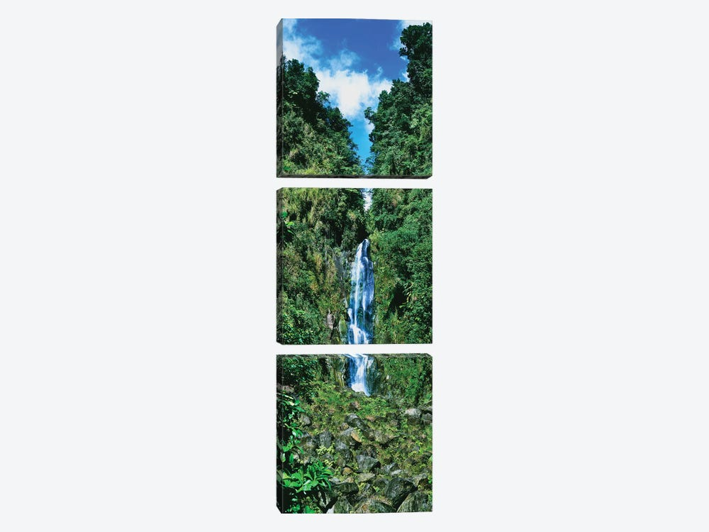 Father Falls, Trafalgar Falls, Dominica, Caribbean by Panoramic Images 3-piece Canvas Art