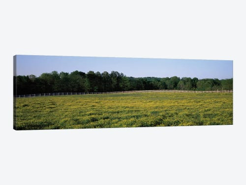 Fence Along A Field Johnson County Illinois Usa Canvas Wall Icanvas