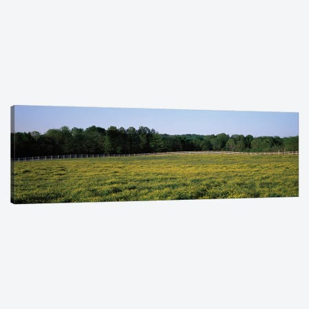 Fence Along A Field, Johnson County, Illinois, USA Canvas Print #PIM14647} by Panoramic Images Canvas Wall Art