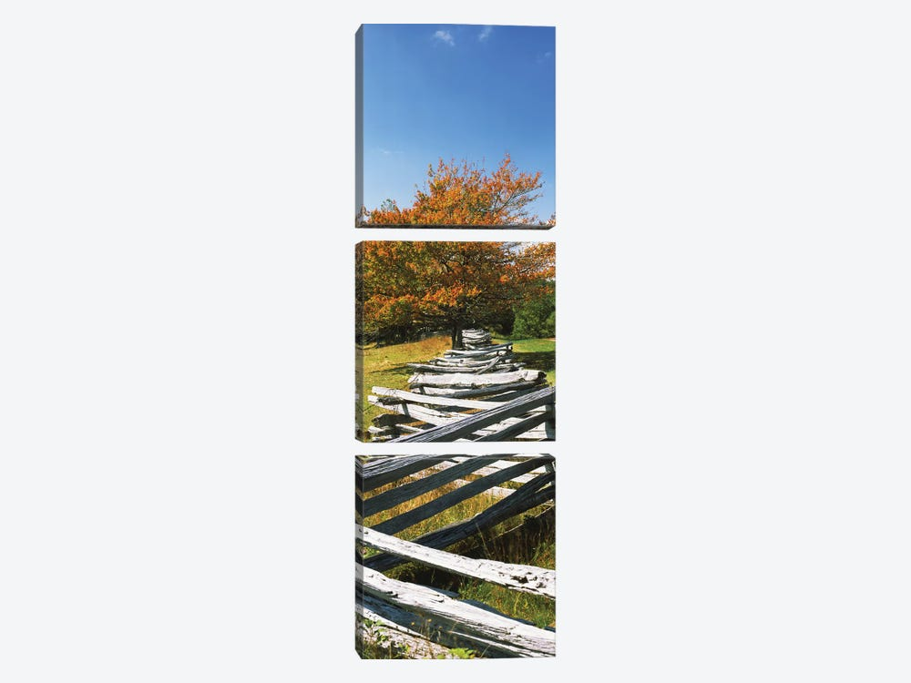 Fence In A Park, Blue Ridge Parkway, Floyd County, Virginia, USA by Panoramic Images 3-piece Canvas Wall Art