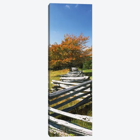 Fence In A Park, Blue Ridge Parkway, Floyd County, Virginia, USA Canvas Print #PIM14648} by Panoramic Images Canvas Art Print