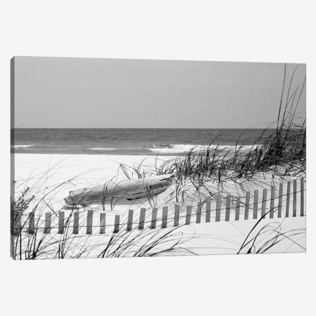 Fence On The Beach, Bon Secour National Wildlife Refuge, Gulf Of Mexico, Alabama, USA Canvas Print #PIM14650} by Panoramic Images Canvas Artwork