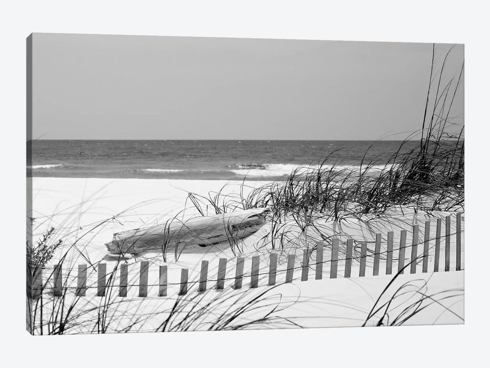 Fence On The Beach, Bon Secour National Wildlife Refuge, Gulf Of Mexico, Alabama, USA by Panoramic Images 1-piece Canvas Print