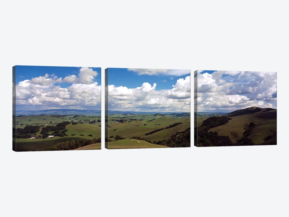 Fields & Meadows Northern California, USA by Panoramic Images 3-piece Canvas Artwork