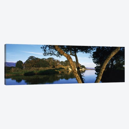 Goleta Slough Wetlands, Goleta, California, USA Canvas Print #PIM14671} by Panoramic Images Canvas Art