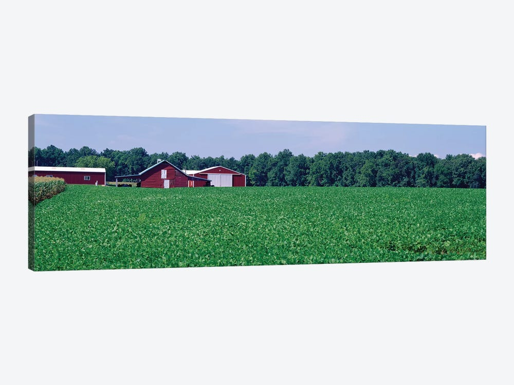 Green Field With Barn In The Background, Maryland, USA 1-piece Canvas Art