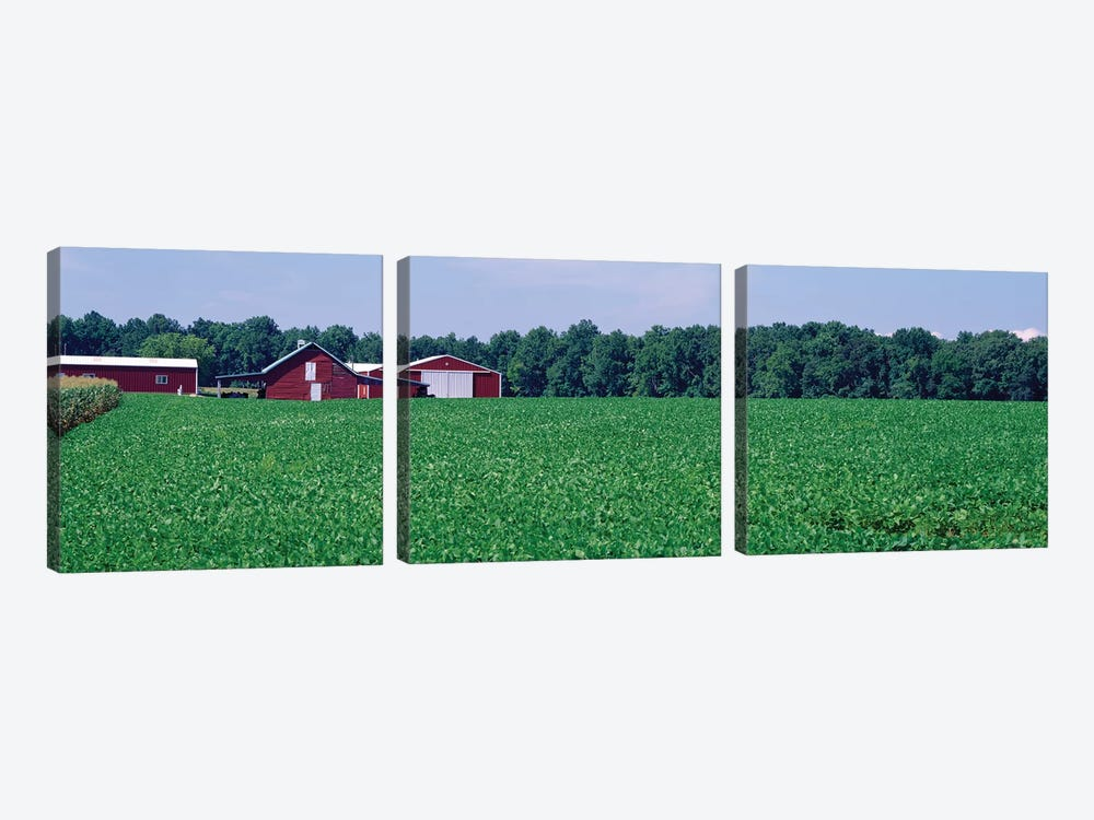 Green Field With Barn In The Background, Maryland, USA by Panoramic Images 3-piece Canvas Artwork