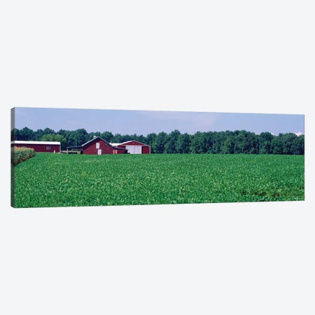 Green Field With Barn In The Background, Maryland, USA Canvas Print #PIM14677} by Panoramic Images Art Print