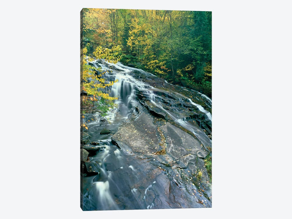 Marshfield Falls, Winooski River, Marshfield, Washington County, Vermont, USA II by Panoramic Images 1-piece Canvas Artwork