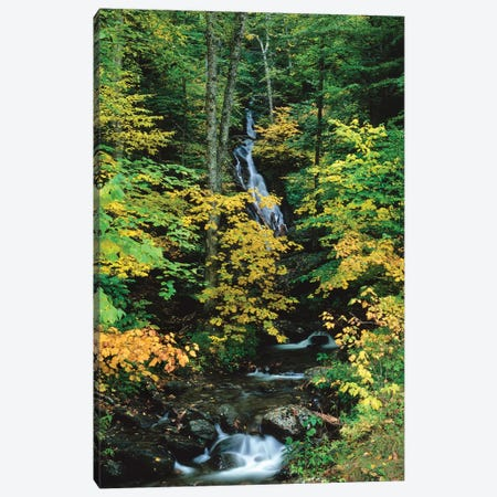 Moss Glen Falls, Vermont Route 100, Granville Reservation State Park, Vermont, USA II Canvas Print #PIM14750} by Panoramic Images Canvas Art Print